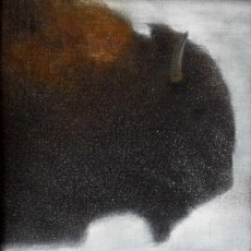 'Bison 1' mixed media 17.5x17.5cm SOLD