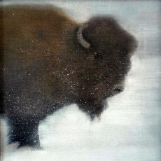 'Bison 2' mixed media 17.5x17.5cm SOLD