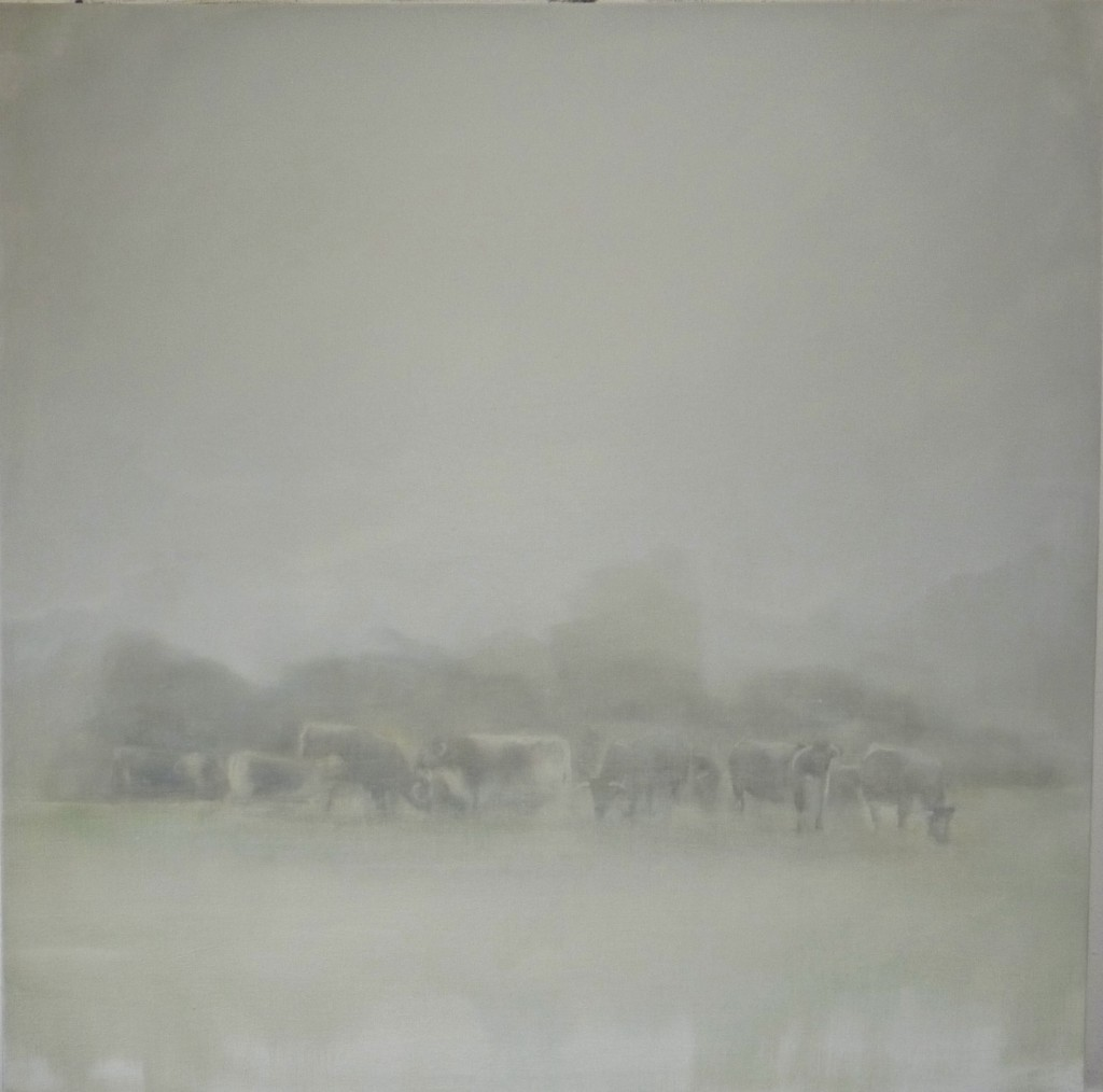 'Long Horn Cattle' oil on canvas 70x70cm SOLD