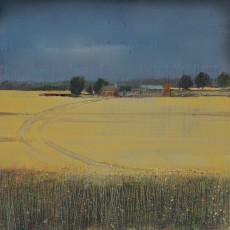 ''Field Edge 3' oil on board 13x 13cm £120 SOLD